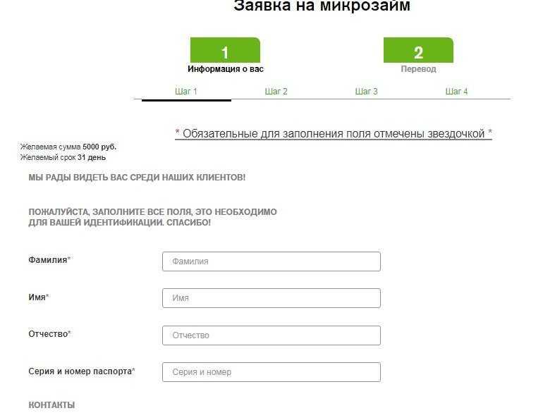 Блиц займ онлайн заявка